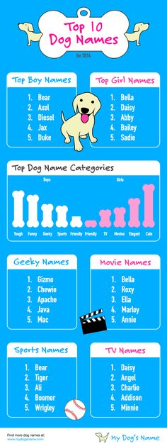 Top 10 Dog Names for 2014 from mydogsname.com. We compiled user favorites and had to share. #3 was quite a surprise!