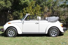 1977 Volkswagen Beetle 1600 Karmann Maintenance/restoration of old/vintage vehicles: the material for new cogs/casters/gears/pads could be cast polyamide which I (Cast polyamide) can produce. My contact: tatjana.alic@windowslive.com