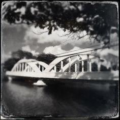 Lens: Tinto 1884 Film - D Type Plate Flash - Standard