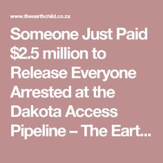 Someone Just Paid $2.5 million to Release Everyone Arrested at the Dakota Access Pipeline – The Earth Child