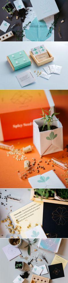 Packet PVD Seed Kits — The Dieline - Branding & Packaging Design