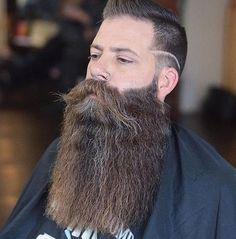 Grey Beards, Long Beards, Hipster Beards, Badass Beard, Epic Beard, Beard And Mustache Styles, Beard No Mustache, Long Beard Styles, Hair And Beard Styles