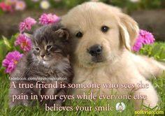 a true friend ~