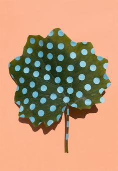 Wonderplants: Art Project by Sarah Illenberger | Inspiration Grid | Design Inspiration