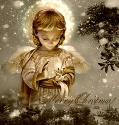 Merry Christmas Quote With Beautiful Angel christmas merry christmas christmas gifs christmas quotes christmas image quotes christmas quotes and sayings merry christmas gifs Beautiful Christmas Greetings, Merry Christmas Quotes, Merry Christmas And Happy New Year, Vintage Christmas Cards, Christmas Love, Christmas Wishes, Christmas Angels, Winter Christmas, Christmas Scenes