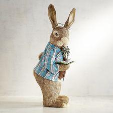 Baxter the Rabbit