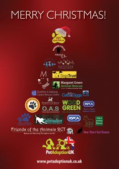 The Pet Adoption UK 2013 Christmas E Card Green Animals, Animal Rescue, Charity, Dog Cat, Pets, Christmas, Navidad, Animal Welfare, Weihnachten