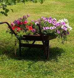My Mammaws old wheelbarrow