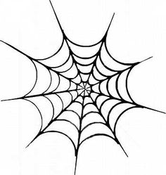 SPIDER WEB PICTURES, PICS, IMAGES AND PHOTOS FOR YOUR TATTOO ... - ClipArt Best - ClipArt Best