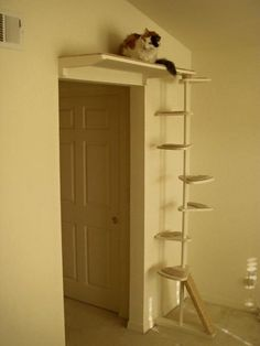 That's a nifty idea for cat furniture...