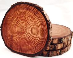 Natural Tree Wood Coasters with Bark 4-Pack or par ManMadeWoods