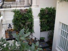7 Best Shops & Restaurants images | garden design, vertical