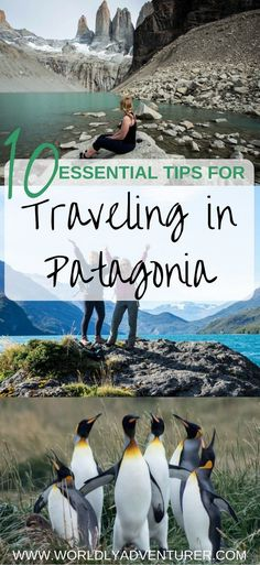 Planning at trip to Patagonia? Read my essential tips for planning like a pro and making the most of South America's most stunning region. This is everything you need to know before you travel in Patagonia. Machu Picchu, Patagonia Travel, In Patagonia, Backpacking South America, South America Travel, Hotel Istanbul, Travel Photographie, Titicaca, South America Destinations