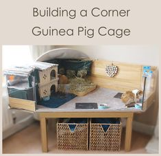 Buy The Right Size Guinea Pig Cage. Photo by maskarade Purchasing a guinea pig cage in a pet shop is unfortunately a good way to ensure that it is in fact too small for your pet's needs. Diy Guinea Pig Cage, Guinea Pig Hutch, Guinea Pig House, Pet Guinea Pigs, Guinea Pig Care, Pet Pigs, Bunny Hutch, Hamster House, Cavy Cage