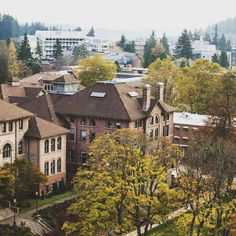 My Chances on WWU this fall 2010?