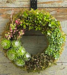 Succulent + moss wreath.   Not sure if this is a living wreath or not... definitely outstanding.