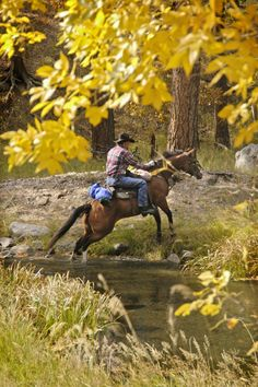 Explore one of the many #horseback trails in #RapidCity #SouthDakota