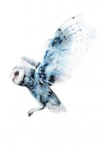 owls blue animals watercolor water colors