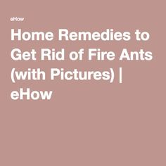 Home Remedies to Get Rid of Fire Ants (with Pictures) | eHow