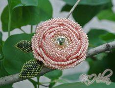 роз. роза 1.jpg
