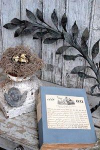 DSC_0084 pretty birds nest on tabletop