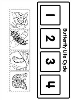 life cycle butterfly worksheet for kids (1) | Crafts and Worksheets for Preschool,Toddler and Kindergarten