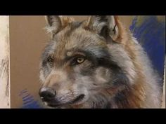 Wolf in pastel by Marjolein Kruijt.drawing with pastel pencils Pastel Portraits, Pet Portraits, Canis, Pastel Artwork, Color Pencil Art, Pastel Drawing, Belleza Natural, Wildlife Art, Art Techniques