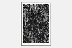 Renato Grass Print