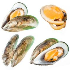 The truth about green-lipped mussels