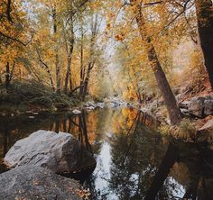 Fall in Sedona, Arizona. I never thought places like Oak Creek existed in this state. I almost want to get into fly fishing just so I have an excuse to hunt peaceful streams.. #stayandwander