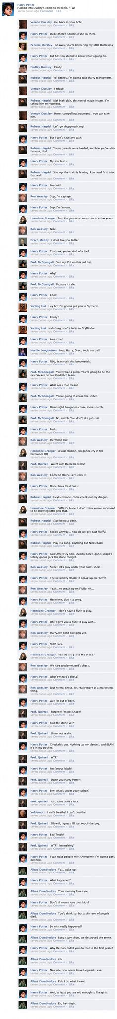 "The Entirety of ""Harry Potter and the Sorcerer's Stone"" in one Facebook Thread......worthy of some giggles :P"