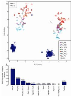 In this study, researchers at the Fudan University, China report their analysis of RNA-Seq data from 92 ERCC controls spiked in a diverse collection of 447 RNA samples from eight ongoing studies involving five species (human, rat, mouse, chicken, and Schistosoma japonicum) and two mRNA enrichment protocols, i.e., poly(A) and RiboZero. The entire collection of datasets consisted of 15650143175 short sequence reads, 131603796 (i.e., 0.84%) of which were mapped to the 92 ERCC references. The…