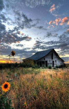 abandoned barn in an artistic seting