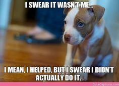 I Swear It Wasn't Me…, I Mean, I Helped, but I Swear I Didn't Actually Do It.
