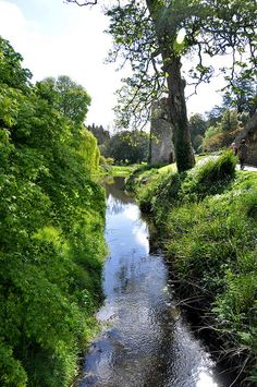 Blarney Castle, Cork. There are over 60 acres of sprawling parklands which include gardens, avenues, arboretums and waterways. #gardenofireland #garden #ireland #gardenstovisit
