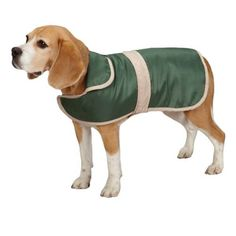Casual Canine Barn Coat for Dogs, 30' XXL, Hunter Green -- Wow! I love this. Check it out now! : Accessories for dog