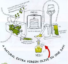 the olive oil process ..... just the way we make our own!
