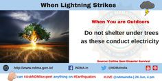 Do not shelter under trees as these conduct electricity. Lightning Safety, Lightning Strikes, Thunderstorms, Shelter, Survival, Management, Trees, Author, Education