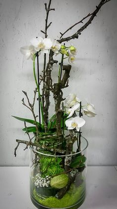 photo Source by Orchid Centerpieces, Orchid Arrangements, Ikebana, Artificial Orchids, Deco Floral, Floral Bouquets, Plant Decor, Flower Vases, Flower Decorations