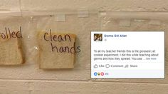 This Teacher's Neat (But Extremely Gross) Experiment For Her Students Has Gone Viral
