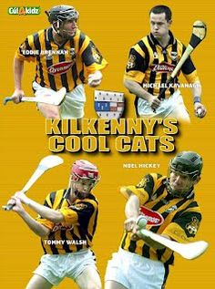 Kilkenny Hurlers My People, Just For Laughs, Hurley, Cool, Imagination, Cat Lovers, Grass, Football, Baseball Cards