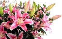 Lovely Flowers wallpaper