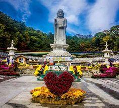 Daegu another Donghwasa temple #daegu #donghwasa #southkorea #korea #hayqueviajar #instaasia #instalike #instatravel #ig_travel #ig_worldclub #temple #buddhist #buddhism #buddhisttemple #buddha #travel #asia #travelasia #asiatravel #koreatravel #travelasia #asiatrip #asiantravel #tripasia #asia #instaasia #instalike #instatravel #fall2015 #travel #hongkong2015#hdr_love #hdr_pics #ig_travel #ig_korea #ig_worldclub #ig_love