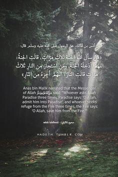 "hadeth: ""عن أنس بن مالك، عن الرسول صلى الله عليه وسلم قال:"" "" صحيح- الألباني Anas bin Malik narrated that the Messenger of Allah (s.a.w) said: ""Whoever asks Allah (s.w.t) Paradise three times,..."