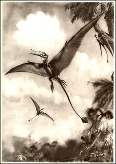 Rhamphorhyncus | Zdeněk Burian (1905-1981) | Prehistoric Animals (1960)
