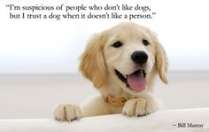 I'm suspicious of people who don't like dogs, but I trust a dog when it doesn't like a person. – Bill Murray thedailyquotes.com