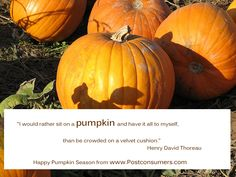 Fall is here! We're celebrating with some of our favorite pumpkin quotes! Enjoy.