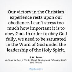 Book Club Books, Good Books, Lord And Savior, Christian Living, Word Of God, Holy Spirit, Leadership, Insight, Ebooks