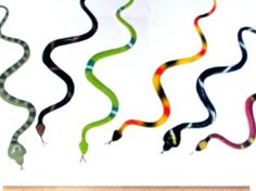 """Amazon.com: 12 Rubber RAINFOREST Snakes/14"""" Rain Forest Snake Figures/PARTY Favors/NATURE Toys/Anaconda/BOA Constrictor/Rattle/CORAL/Viper: ..."""