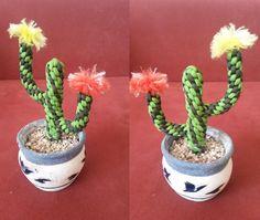 paracord cactus